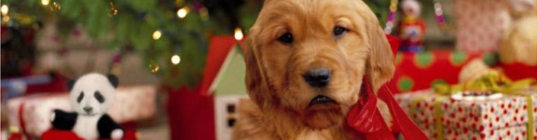 Hallmark cards Ziemassvētku apsveikumu kartiņas