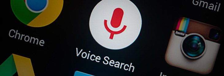 Visual and voice search